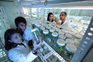 biotechnology waste